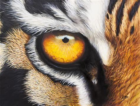 imagenes ojos de tigre para mirar pinturas zaro norma centro cultural