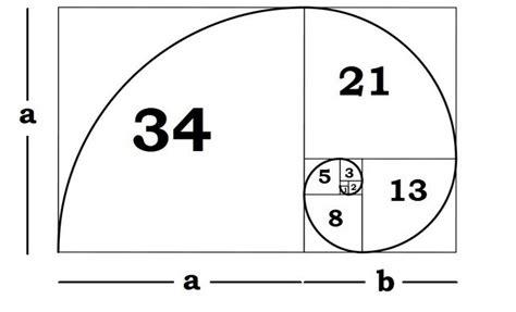 golden section art definition voc 234 sabe o que 233 a propor 231 227 o 193 urea mega curioso