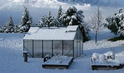 backyard greenhouse winter how to prepare your greenhouse for winter garden life style express co uk