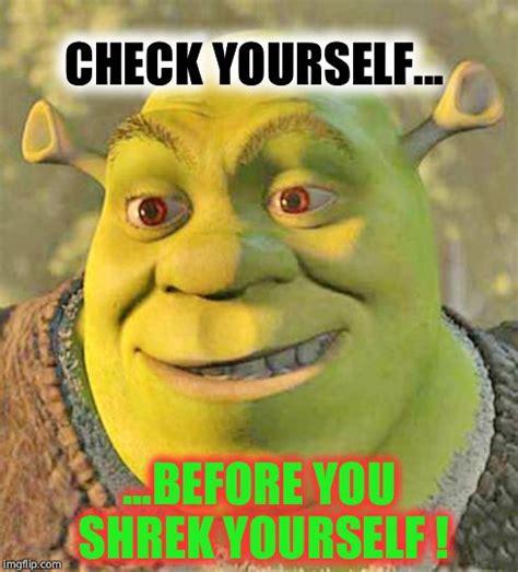 Shrek Meme - shrek meme related keywords suggestions shrek meme