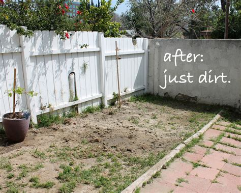 Backyard Ideas To Cover Dirt Gardening Archives Page 5 Of 7 Our Cozy Cubbyhole