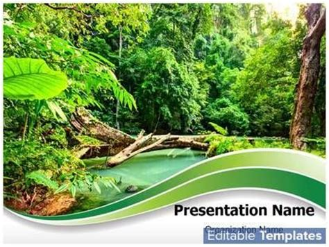 powerpoint themes jungle jungle green powerpoint presentation templates powerpoint