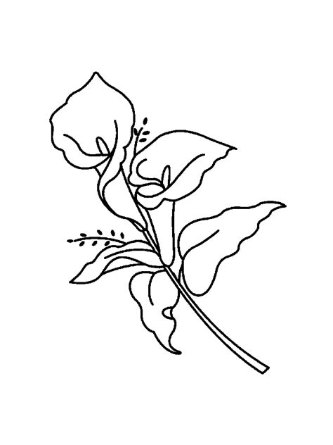 coloring pages of easter lilies free easter coloring pages