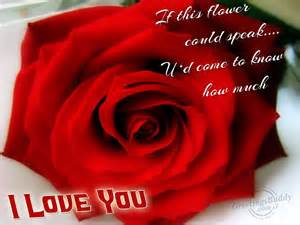 i love you dear greetingsbuddy com
