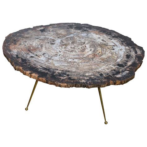 free shape petrified wood coffee table for sale at 1stdibs