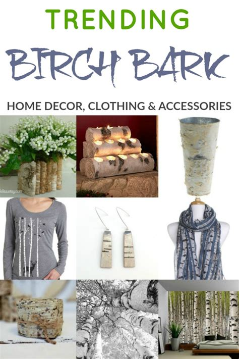 birch tree bark trends i m loving right now knick of time