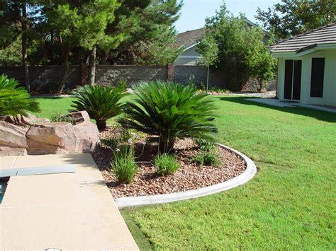 palm trees flagstone additional tropical feel 183 cacti landscapes las vegas