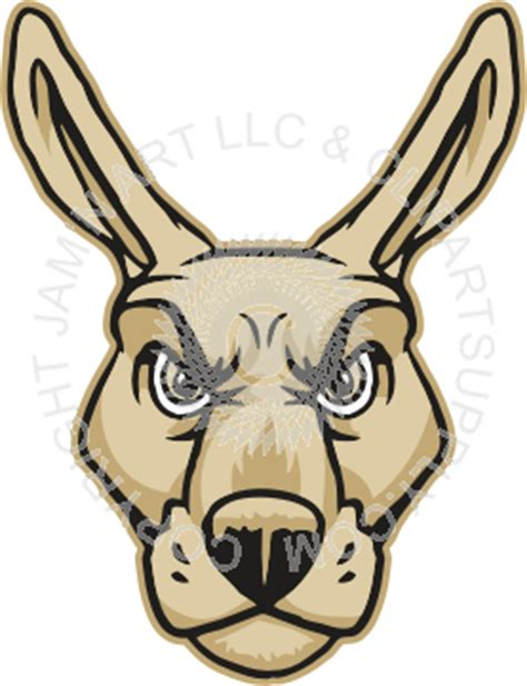 cool kangaroo head front view