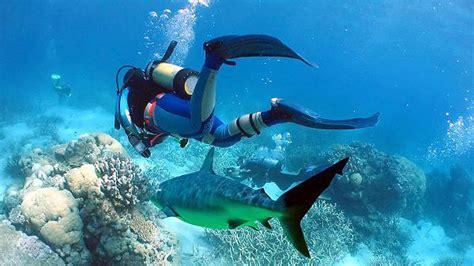 Dress Scuba Cantik kumpulan tempat menyelam paling eksotis di dunia indolah