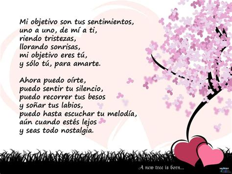 spanish mothers day poems 98 best images about spanish poems for kids on pinterest