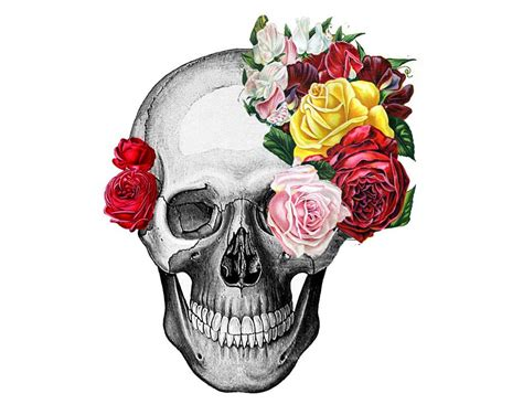 Skull And Flower vintage skull and roses by rococcola etsy skull