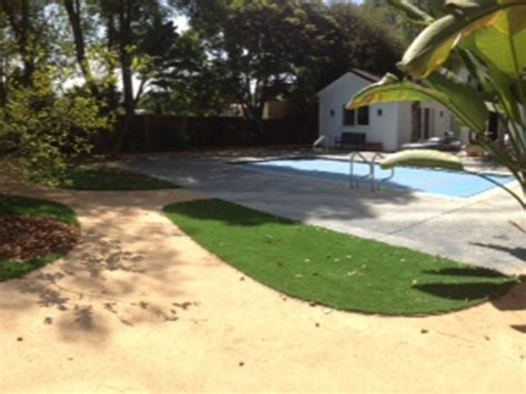 backyard in forestville turf grass forestville california lawns backyard designs