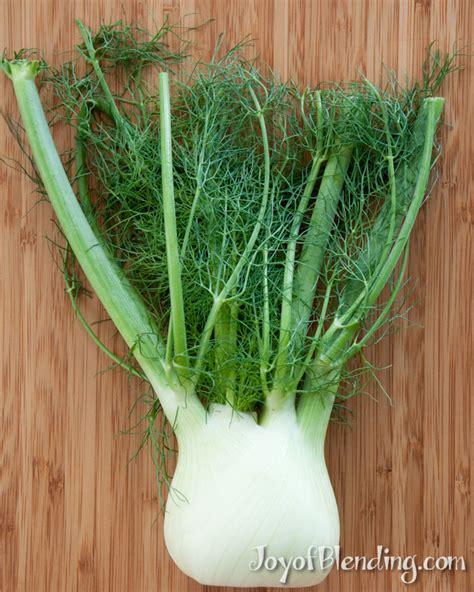fennel smoothie joy of blending