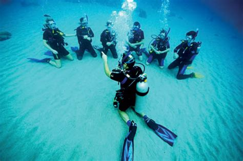 House Of Scuba by Diving In The Koh Phi Phi Islands Travel Info