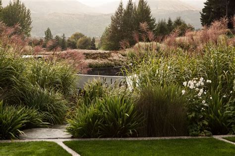 Landscape Supplies Queenstown 132 Best Suzanne Turley Landscapes Images On