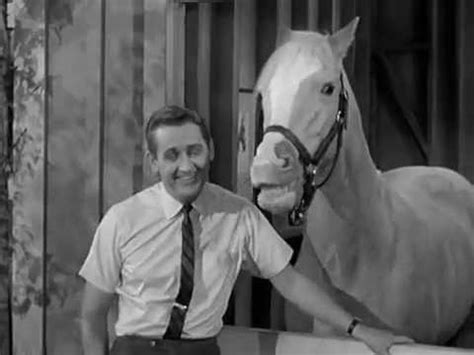mr ed the talking horse the empty feed bag blues youtube
