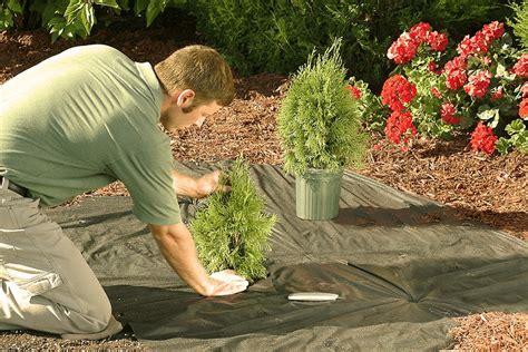 landscaping insurance cost coverage providers