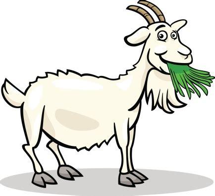 goat eating grass clipart (9+)
