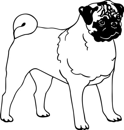 Pug Outline by Pug Clip Clipart Best