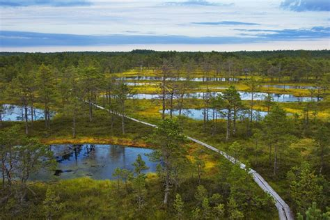 Nice Garden by Lahemaa National Park And Information Point Estonia