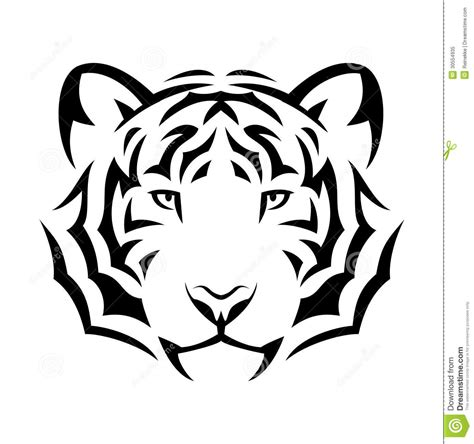 black and white tiger tattoo tiger stock vector image of cruel