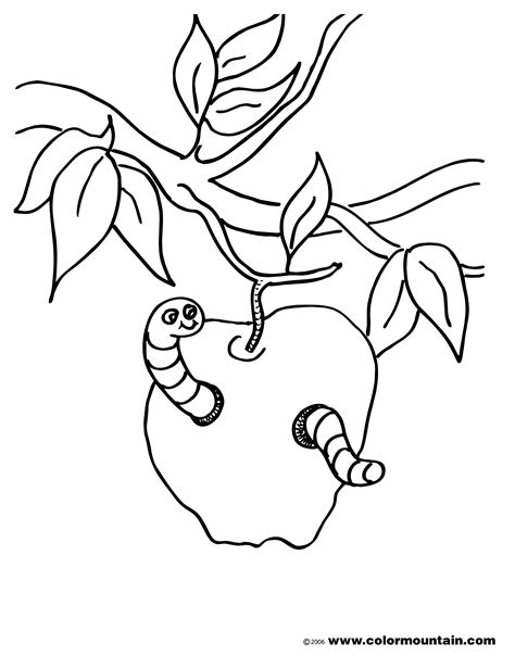 colouring picture worm worm coloring pages for