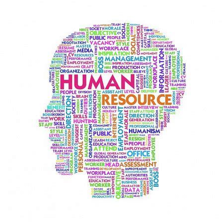 Cabinet De Recrutement Ressources Humaines by Site Officiel De Smart Cabinet De Recrutement 224