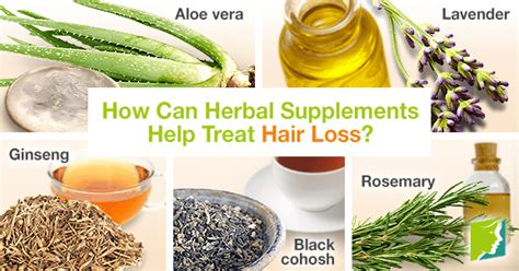 how to use lavender to treat hair loss ehow how can herbal supplements help treat hair loss