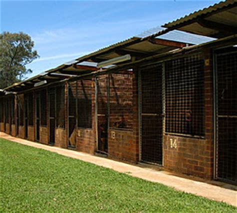 kennel comfort pet motel luxury dog kennels in australia pets training and boarding