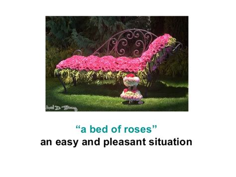 bed of roses meaning english idioms
