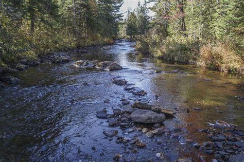 terrain bord de l eau secteur lac m 233 gantic