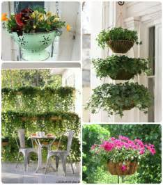 how to decorate outdoor pots of plants home interior design