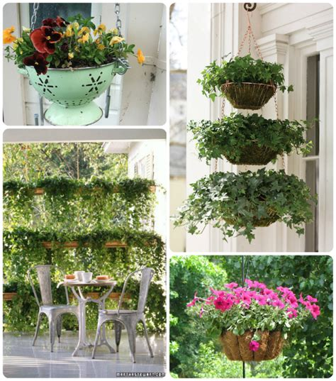 hanging plant ideas using simple landscaping plants and flowers to customize