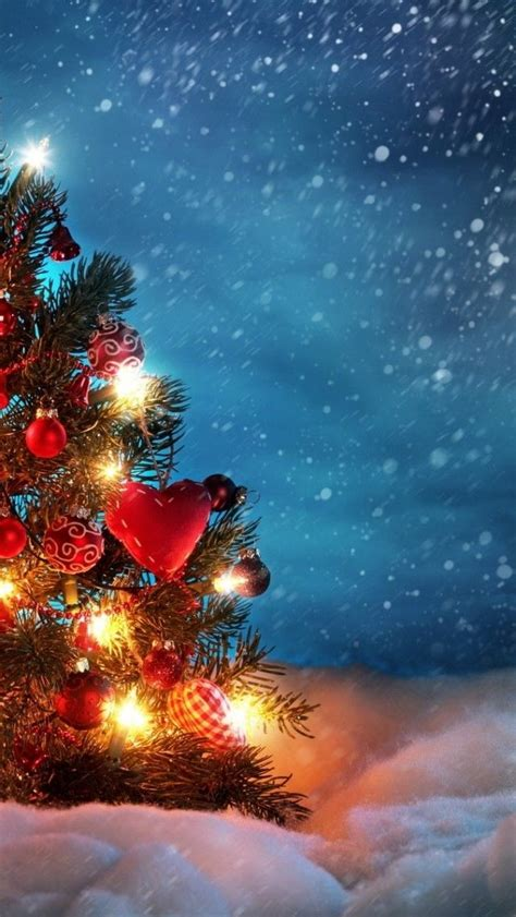 outdoor christmas tree wallpaper pictures   images  facebook tumblr pinterest