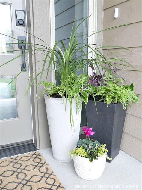 Planter Ideas For Front Doors by Best 25 Front Door Plants Ideas On Front Door