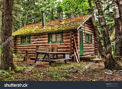Forest Mountain Cabins by Log Cabin Surrounded By Forest Duck Stock Photo 81599143