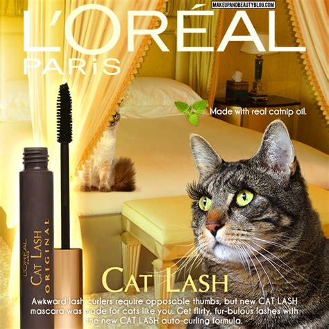 Cat Kuku Loreal tabs the cat for l oreal cat lash mascara tabs the cat cats and