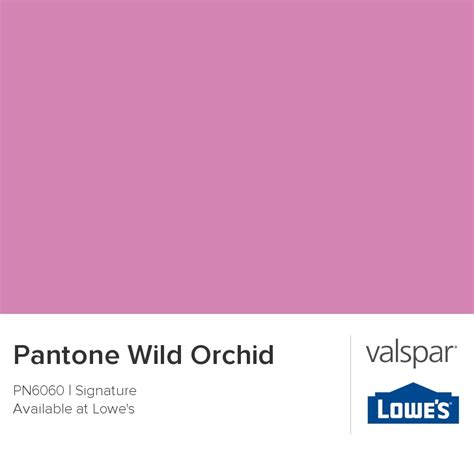 pantone orchid color of the year 2014 home orchid pantone and color