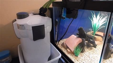 Filter Pembersih Akuarium how to set up a canister filter for aquarium aquarium