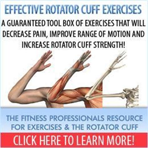 torn rotator cuff bench press rotator cuff exercise continuing education for physical