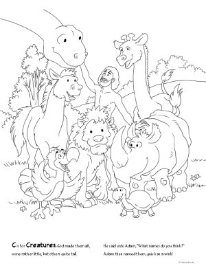 coloring pages creation animals free 78 coloring pages with poems from answers in genesis