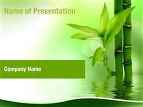 Zen Bamboo Forest Powerpoint Template Backgrounds Zen Presentation Templates