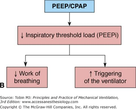 positive end expiratory pressure | anesthesia key