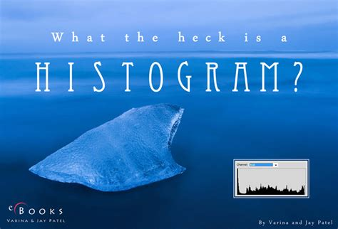 reality in the shadows or what the heck s the higgs books what the heck is a histogram photography by varina