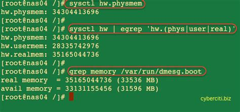 find how much ram i freebsd find out ram size including total amount of free