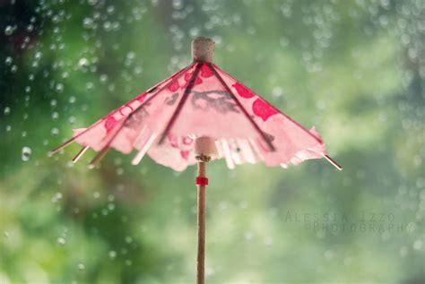 Rainy Summer rainy summer by alessia izzo on deviantart