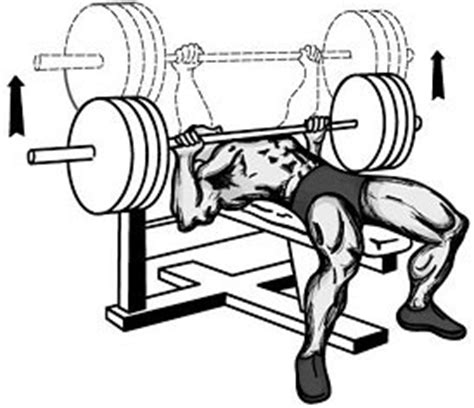 bench press eccentric phase the best rep speed for muscle size and hypertrophy