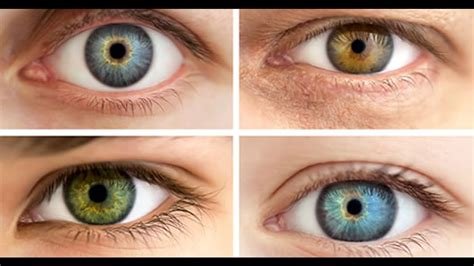 different types of eye colors why do some different colored facts you