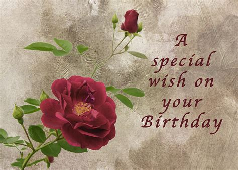 Blue Duvet Red Rose Birthday Wish Photograph By Michael Peychich