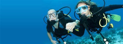 dive master divemaster course 187 scuba dive courses cape town